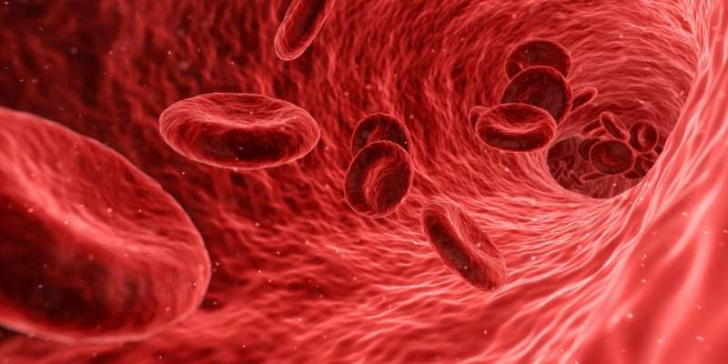 Discovery suggests potential new treatment for deadly blood cancer